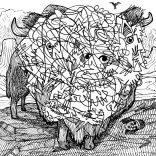 """Buffalo Ill"" (ink on paper, 21x29,7cm), 200 euros"