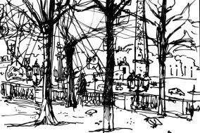 Paris trees